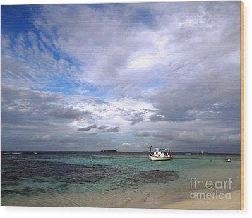 Maldives 08 Wood Print by Giorgio Darrigo