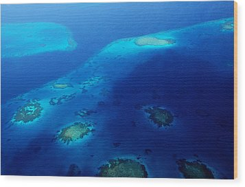Maldivian Reefs. Aerial Journey Over Maldivian Archipelago Wood Print by Jenny Rainbow