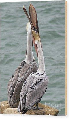 Male Brown Pelican Neck Exercise Wood Print by Darleen Stry