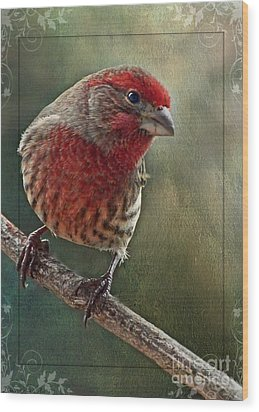 Male Housefinch With Green Texture And Decorations Wood Print by Debbie Portwood