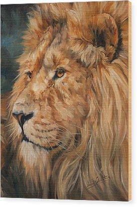 Male Lion Wood Print by David Stribbling