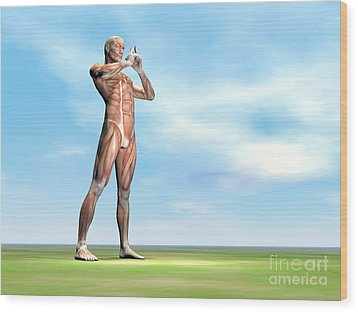 Male Musculature Standing On The Green Wood Print by Elena Duvernay