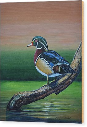 Male Wood Duck Wood Print by Mary ann Blosser