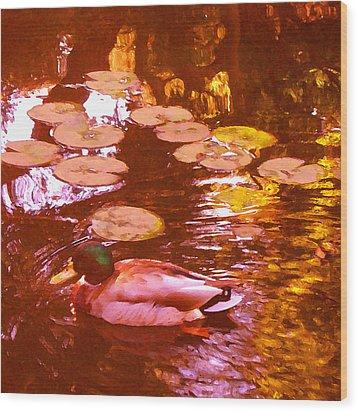 Mallard Duck On Pond 3 Square Wood Print by Amy Vangsgard