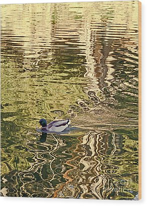 Wood Print featuring the photograph Mallard Painting by Kate Brown