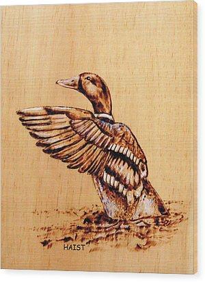 Mallard Wood Print by Ron Haist