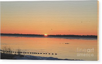 Mallards At Sunrise Wood Print