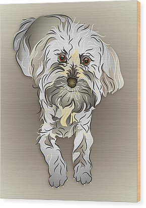 Maltipoo Wood Print by MM Anderson