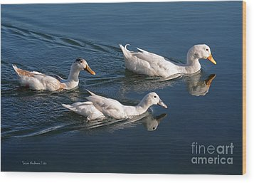 Wood Print featuring the photograph Mama Duck Leads The Way by Susan Wiedmann