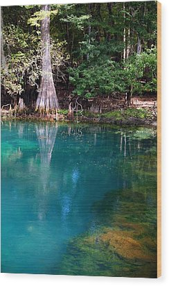 Manatee Spring Wood Print by Doug McPherson