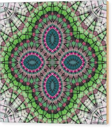Mandala 111 Wood Print by Terry Reynoldson