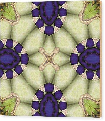 Mandala 115 Wood Print by Terry Reynoldson