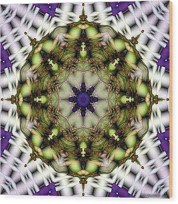 Mandala 21 Wood Print by Terry Reynoldson