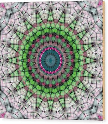 Mandala 26 Wood Print by Terry Reynoldson