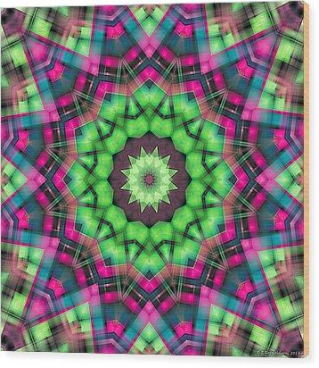 Mandala 29 Wood Print by Terry Reynoldson