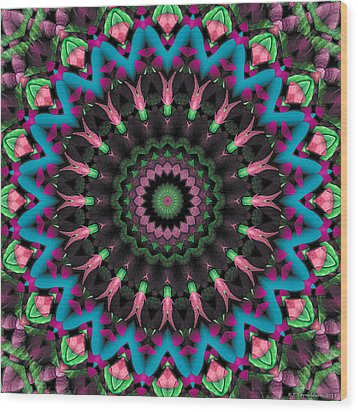 Mandala 35 Wood Print by Terry Reynoldson