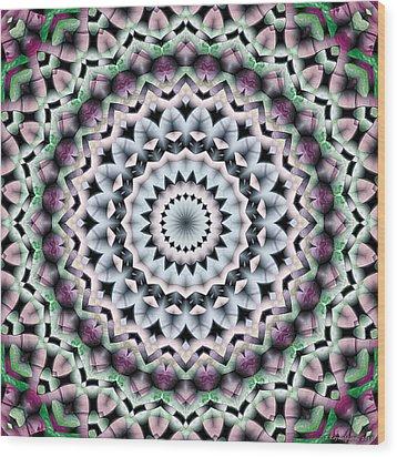Wood Print featuring the digital art Mandala 40 by Terry Reynoldson