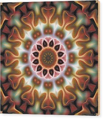 Mandala 67 Wood Print by Terry Reynoldson
