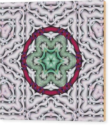 Mandala 7 Wood Print by Terry Reynoldson