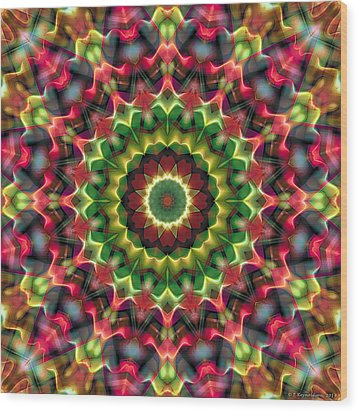 Mandala 70 Wood Print by Terry Reynoldson