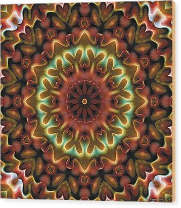 Mandala 71 Wood Print by Terry Reynoldson