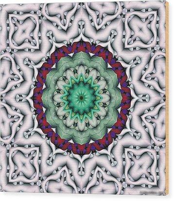 Mandala 8 Wood Print by Terry Reynoldson