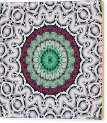 Mandala 9 Wood Print by Terry Reynoldson