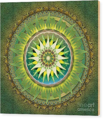 Mandala Green Wood Print
