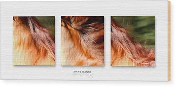 Mane Dance Triptych Wood Print