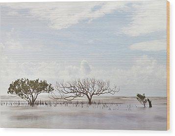 Mangrove Tree In Blurred Sea Wood Print by Dirk Ercken