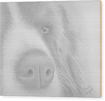 Man's Best Friend Wood Print by Brenda Bonfield