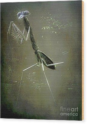 Mantis II Wood Print by Arne Hansen