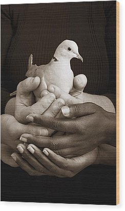 Many Hands Holding A Dove Wood Print by Ron Nickel