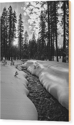 Manzanita Creek Wood Print by Randy Wood