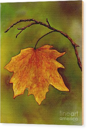 Wood Print featuring the painting Maple Leaf In It's Yellow Splendor by Nan Wright