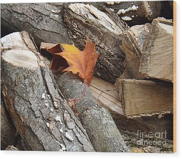 Wood Print featuring the photograph Maple Leaf In Wood Pile by Brenda Brown
