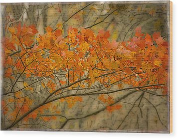 Maple Leaves Wood Print