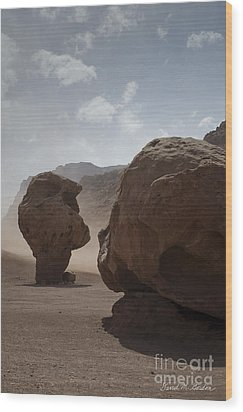 Marble Canyon No. 2 Wood Print by Dave Gordon