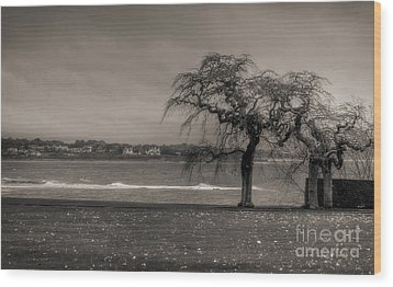 Wood Print featuring the photograph Marble House - Newport by Vicki DeVico