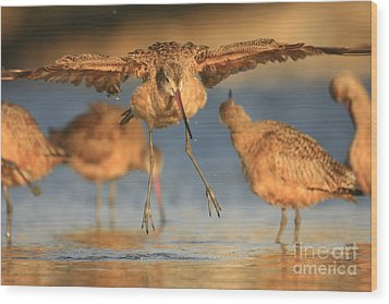 Wood Print featuring the photograph Marbled Godwit  by John F Tsumas