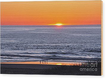 Wood Print featuring the photograph Marbled Godwits Reflecting A Sunset by Susan Wiedmann