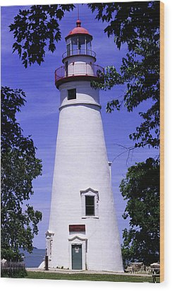 Wood Print featuring the photograph Marblehead Light by Terri Harper