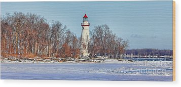 Marblehead Lighthouse In Winter Wood Print