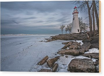 Marblehead Lighthouse  Wood Print by James Dean