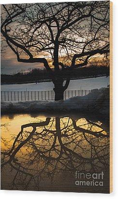 March Meltdown Wood Print by Sue OConnor