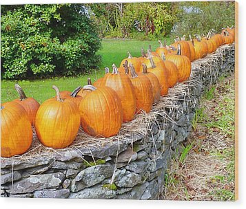 March Of The Pumpkins Wood Print by Janice Drew