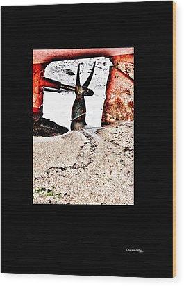 Mareas Baixas 2 Wood Print by Xoanxo Cespon