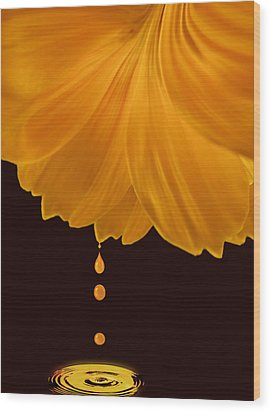 Marigold Factory Wood Print by Deborah Smith
