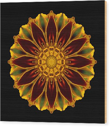 Marigold Flower Mandala Wood Print by David J Bookbinder