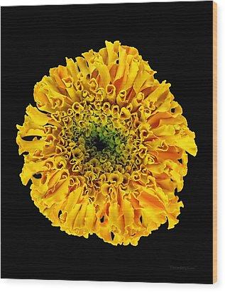 Marigold Wood Print